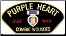 Gulf War Purple Heart