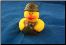 Rubber Duckie - Camo/Compass