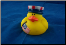 Rubber Duckie - Flag