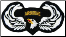 101st Airborne Wings