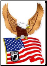 POW Eagle with Flag
