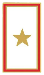 Gold Star Service Pin