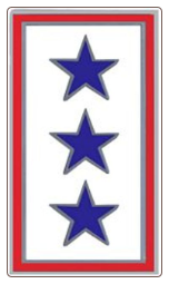 Blue Three Star Service Pin