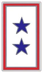 Blue Two Star Service Pin